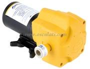 Nautica - Autoclave elettronica WHALE ``IC`` a portata variabile e pressione costante 24 Volt