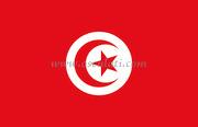 Accessori NauticiBandiera Tunisia 20x30 cm